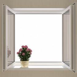 fereastracuflori
