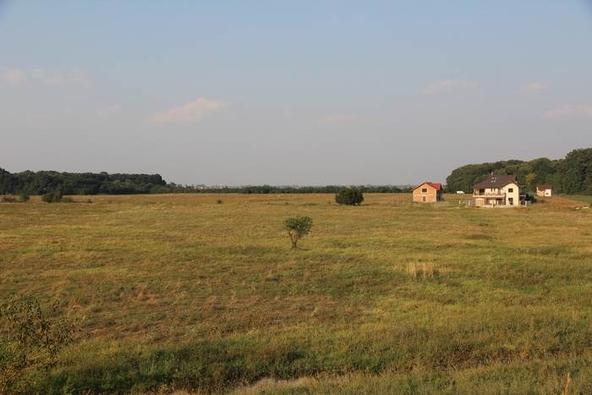 teren Clinceni