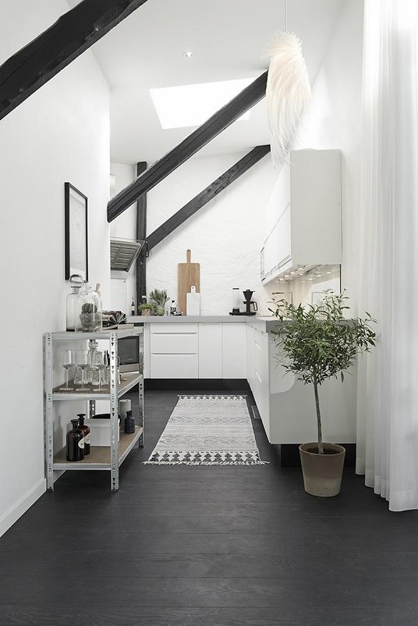 skylight apartment 10