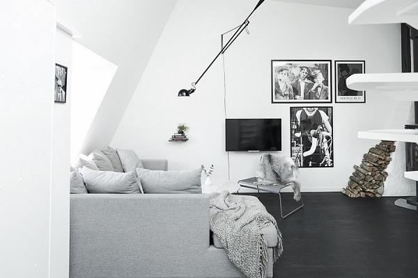 skylight apartment 5