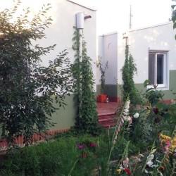 Casa de amintiri Simona Pribeagu 3