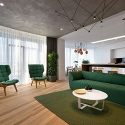 green minimalist apartment 0