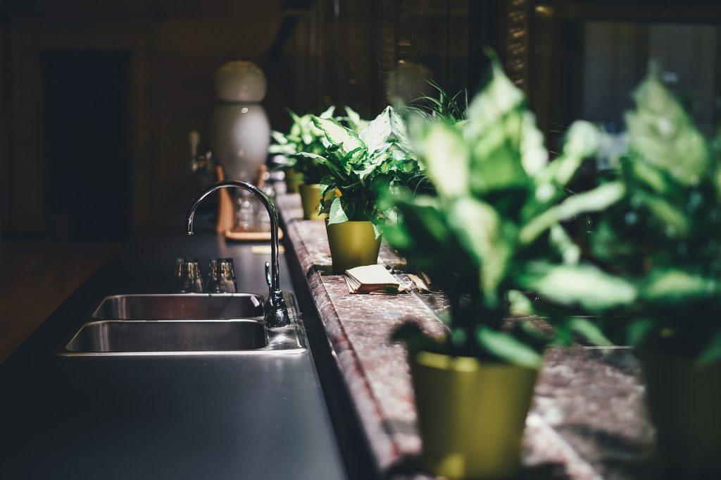design interior plante